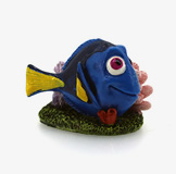 DORY WITH CORAL