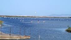 ベータ・デ・ラ・パルマ漁港近郊
